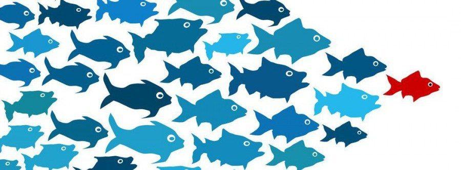 Лидерство-упражнение 6: Управление вашей карьерой