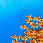 Лидерство-упражнение 2: Быть лидером, за которым пойдут!