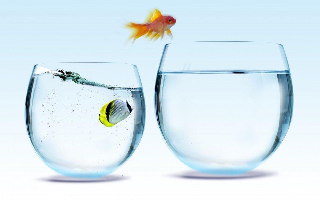 Почему из HR-директоров получаются хорошие генеральные