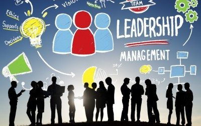 Анализ кадровой политики организации