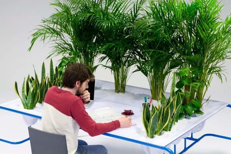 Свежий воздух в офисе и инновации